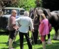 At Lords Farm