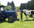 Lords Farm, Sheet. Petersfield