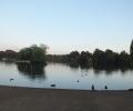 Walk around Petersfield Heath