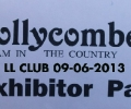 Hollycombe Rally 2013
