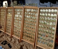 Collection of horse brasses